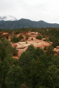 Red Rock and Green Trees by chipfoxx