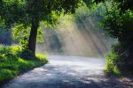 Summer Road by Justine1985