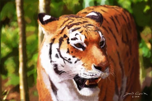 Tiger Painting by dczanik
