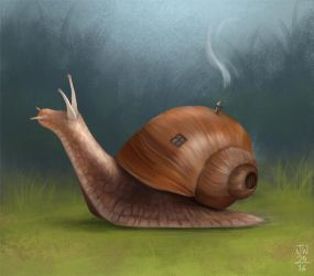 Snail Home by jowyn