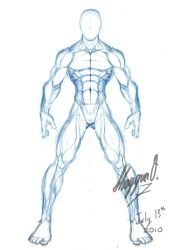Male Anatomy Template: Front by Shintenzu