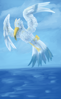 Wingull speedpaint