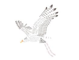 Secretary Bird Typography by Clojo-733