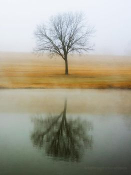 Fogged Reflection by whatimagination