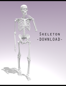 Skeleton [ DOWNLOAD ] by PeachMilk3D