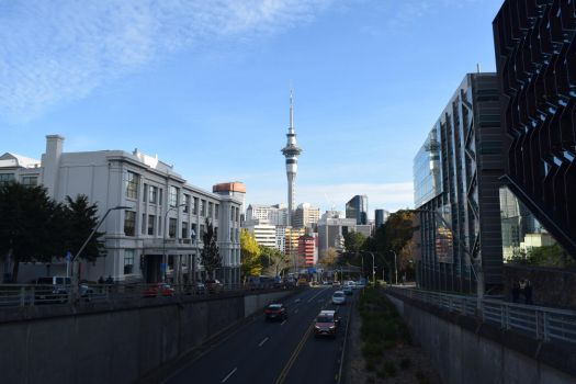 Auckland Morning by Renartus