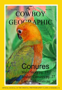 Cowboy Geographic by MisterGuy11