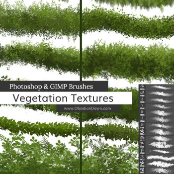 Vegetation / Foliage Textures Photoshop Brushes by redheadstock