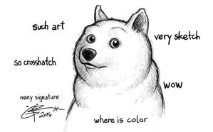 Doge by MorXn