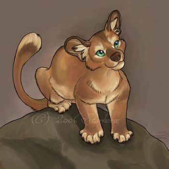 Fossa pup by Starhorse