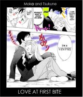 Rosario + Vampire: Love at First Bite by gamera68