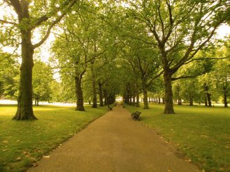 green_park_01 by Demolive