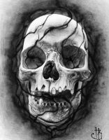 Skull(2) Inverted by herrerabrandon60