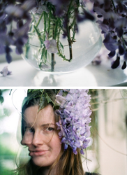 .wisteriaa by dippedFEATHER