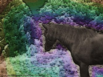 Horse in a different color by poestokergorey