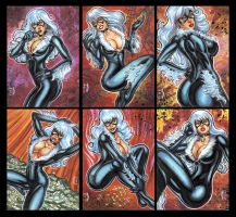 Black Cat Personal Sketch Cards by AHochrein2010