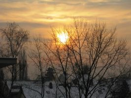Winter morning by Ampata