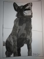 InkTober Drawing #27 Fierce Black German Shepherd by Justyn16