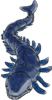 Whale + Centipede Fusion by Chipflake