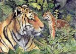 Tigers in the Forest by morgansartworld