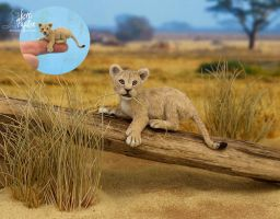 Miniature 1:12 Lion Cub sculpture by Pajutee