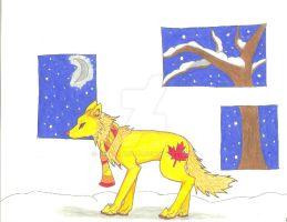 Canadian Wolf by hinata4590