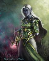 Akordia - Dark Elf Combat Mage by CharlieWilcher