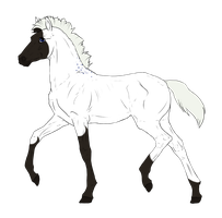 N3848 Padro Foal Design by casinuba