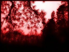 .Red by fireinthedisco