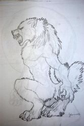 werewolf drawing 6 by tribalwolfie