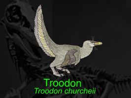 DINOWORLD: TROODON by HUBLERDON