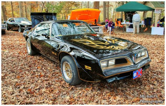 The Bandit by TheMan268