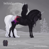 Isilcale ref by Esa82