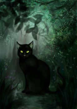 black cat by hyperion1011