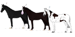 3 Adopts by NorthernMyth