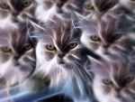 Macho cat fractalius by dermis109