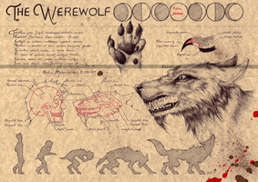THE WEREWOLF (1) by Zellgarm