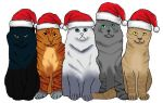 ~Do You Remember?~ Warrior Cats Christmas by SnowWhisker4