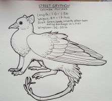 Street gryphon by wingedwolf94