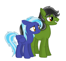 OCs: Sleight Hoof and Quick Storm by tdnart