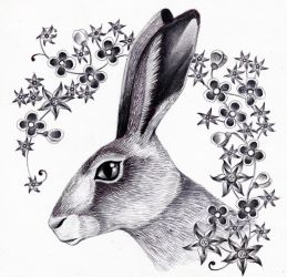 The Hare (Radiotherapy Days 1 and 2) by Ravenari
