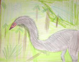Moa  by ChrisM199