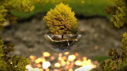 Tree in a glass sphere (wallpaper size 1920x1080) by PewPewMannen