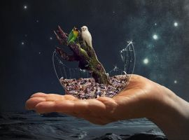 Tiny little world by Lindhane