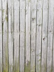 Weathered Wood #5 by CooperationIsKey