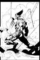 WolverineSketch_by_ryanbnjmn by ColoristChris