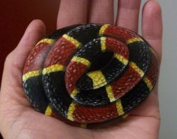 Coral Snake Rock by TinyAna