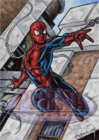 Spider-Man - Sketch Card by tonyperna