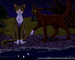 Warriors: Leafpool's Wish. Chapter 4 by Do-omed-Moon