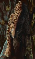 Panther by Trunchbull